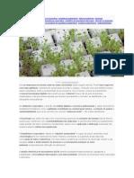 Sustentabilidade Em Escritórios