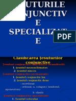 lp-mg-4tesuturi-conjunctive.ppt