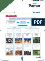 B_1°Año_S5_Biocenosis