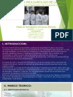 Trabajo de investigación (taraxacum officinale)