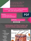 Caracteristicas funcionales de los receptores.pptx