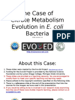 Ecoli Citrate Metabolism Evolution_STD