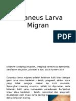 Cutaneus Larva Migran