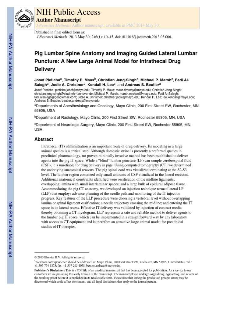 Pig Lumbar Spine Anatomy and Imaging Guided Lateral Lumbar Puncture ...