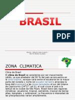 Disertación Brasil