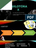 Quilotorax y Tecnicas Quirurgicas