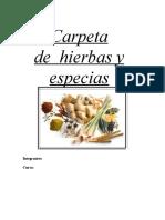 Carpeta de Hierbas y Especias