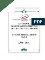 Contaminacion Ambiental - Aguas Verdes