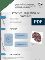 práctica de digestión de proteínas