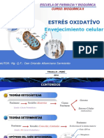 CTRL radicales libres.pdf