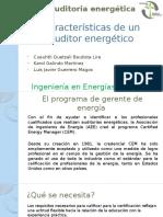 Características de Un Auditor Energético