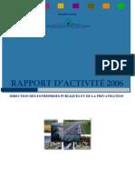 Rapport d'activiteDEPP 2006(11-12-2007)