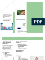 Leaflet Virus Zika