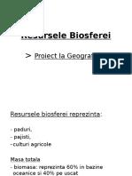 Biosfera - Proiect Geografie