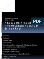 Mediul de Afaceri Si Provocarile Acestuia in Romania