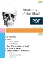 L11_Anatomy of the Skull