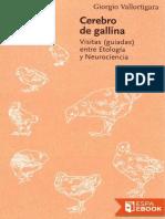 Cerebro de Gallina - Giorgio Vallortigara (8)