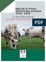 Stratégie de la France pour le bien-être des animaux 2016 – 2020
