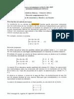 MB 2004-2 Material Complementario N°2 Sistema de Ecuaciones Lineales y No Lineales