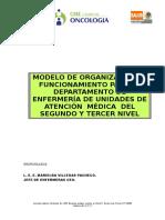 Modelo de Org[1].y Func. Dep.enf. a.M 2 y 3 Nivel. DEL CEO