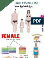 Anatomi Fisiologi Reproduksi