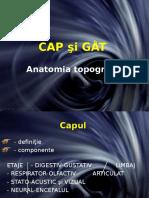 2 Curs 2 Topografie Cap Si Gat