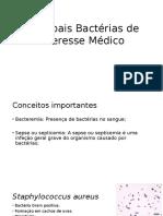 7 Principais Bactérias de Interesse Médico