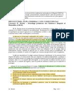 HIPOGLUCEMIA_DANO_CEREBRAL_Y_SUS_CONSECUENCIAS.pdf