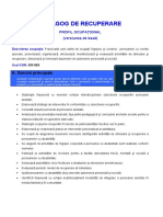 pedagog_recuperare.pdf