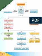 Mapa Conceptual Administración.pdf