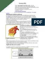 Resumen MRU y Mruv