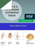 Biokimia Tulang