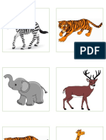 Actividad Animales Selva