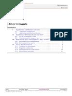 M-CO-DET-JMF.pdf