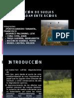 exposicion de suelos acidos.pptx