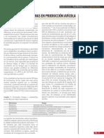 Micotoxinas en Producción Avicola.