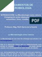Introducción y Morfología Celular