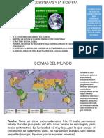 Los Ecosistemas y La Biosfera