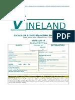 Vineland - Escala de comportamento adaptativo
