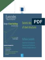 09b Eurocodes Steel Workshop LANDOLFO