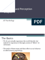 ch 4 notes sensation and perception