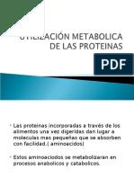 Clase 8. Utilización Metabolica de Las Proteinas (2)