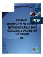 Diplomado Ruc Mod 1 Fundamentos Rev1 2008