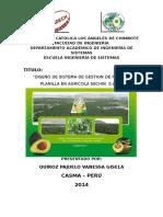 Esquema Para Desarrollo Del Informe de Practicas Pre Profesionales II