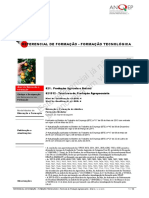 621312 Tecnicoa de Produo Agropecuria ReferencialEFA