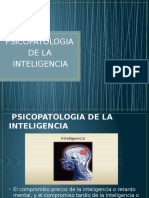 Psicopatologia de La Inteligencia
