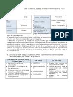 Programacion Curricular Del Periodo Promocional Avanzado Tarea 2015