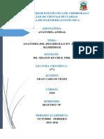 Anatomía Del Desarrollo en Aves y Mamíferos
