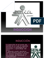 induccion (presentacion)