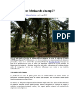 Aceite de Palma. Champú, Alimentos  y Esclavos.pdf